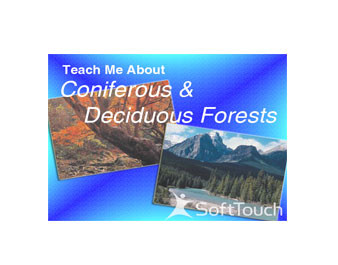 Teach Me About Coniferous & Deciduous Forests