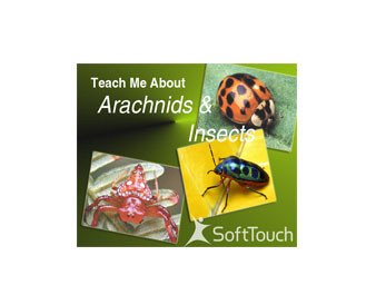 Teach Me About Arachnids & Insects