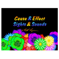 Cause & Effect Sights & Sounds