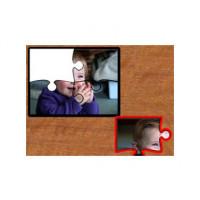 Switch It! Jigsaw Maker 2