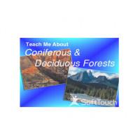 Teach Me About Coniferous & Deciduous Forests